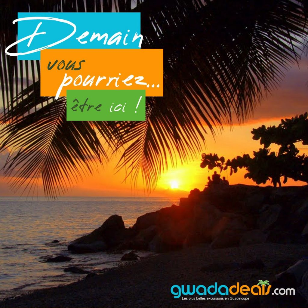 Creation graphique GUADELOUPE